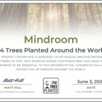 Tree planting – Changing our impact