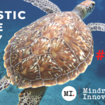 Supporting a Plastic Free July with Global Fauna